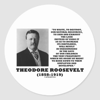Theodore Roosevelt Waste Destroy Natural Resources Classic Round Sticker