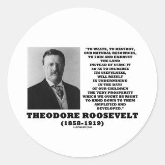 Theodore Roosevelt Waste Destroy Natural Resources Round Sticker
