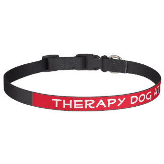 Therapy Dog at Work (large) Pet Collar