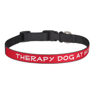 Therapy Dog at Work (medium) Pet Collar