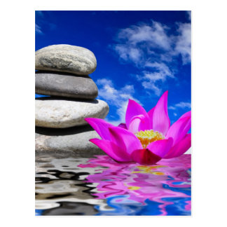 Therapy Rock Stones & Lotus Flower Postcard