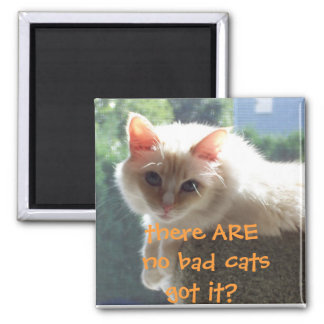 There Are No Bad Cats..Got it? Magnet