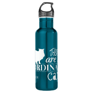 There Are No Ordinary Cats - All Colours 710 Ml Water Bottle