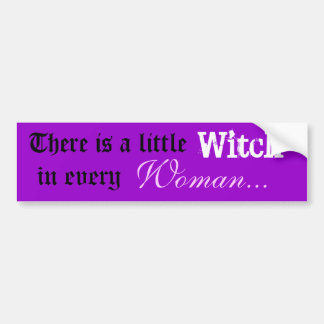 There is a little Witch / Woman bumper sticker