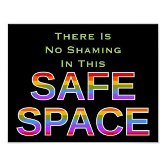 There Is No Shaming In This SAFE SPACE Poster