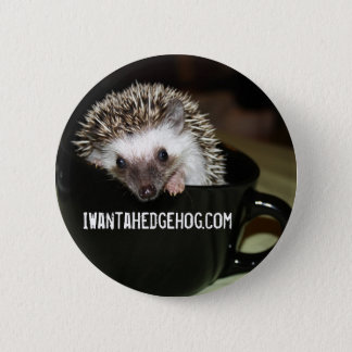 There's a hedgehog in my coffee 6 cm round badge