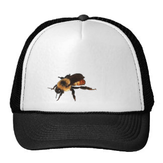 There's A Honey Bee On Your Hat! Cap