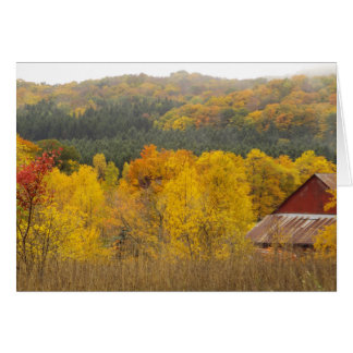 """THERE'S GOLD IN THOSE HILLS"" (AUTUMN IN MICHIGAN) NOTE CARD"