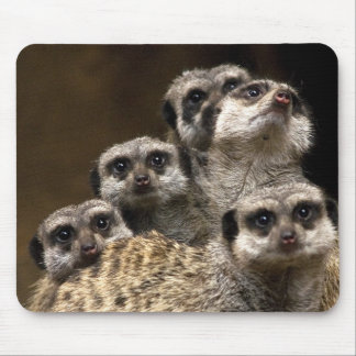 There's One In Every Crowd... Mouse Pad