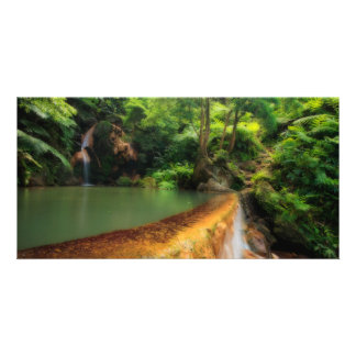 Thermal pool in the forest picture card