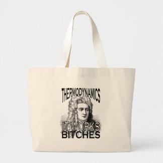 Thermodynamics Bags