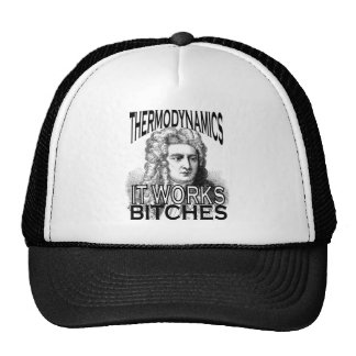 Thermodynamics Mesh Hat