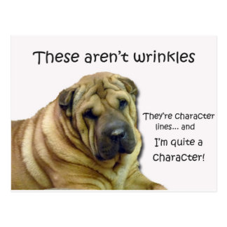 These Aren't Wrinkles... They're Character Lines Postcard