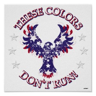 These Colors Don't Run! Eagle Stars & Stripes Poster