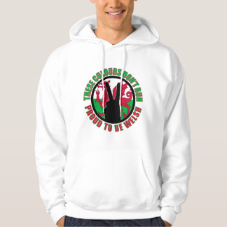 These colours dont run (Wales) Hoodie