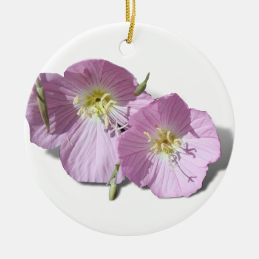 These  Pink Poppies Need Background Color! Ornament