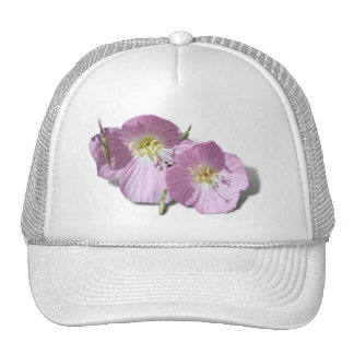 These  Pink Poppies Need Background Color! Mesh Hats