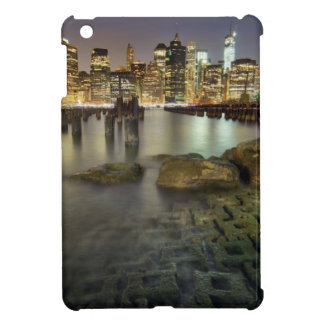 These sticks are in Brooklyn Park iPad Mini Cover