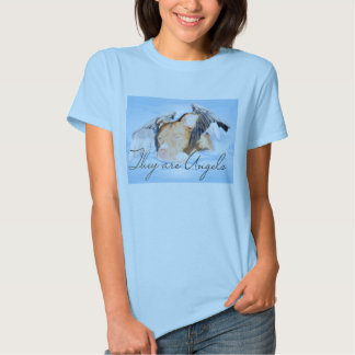 They are Angels Baby Doll blue Tee Shirts