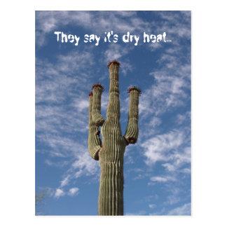 They say it's dry heat... postcard