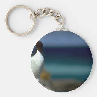 Thick-billed Murre, Hudson Bay, Canada Basic Round Button Key Ring