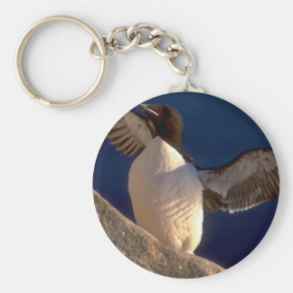 Thick-billed Murre, Hudson Bay, Canada Keychains