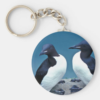 Thick-billed Murres, 1989 Key Chains