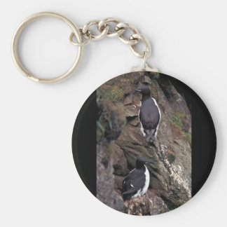 Thick-billed Murres on Hall Island Keychains