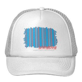 Thin Stripes Aqua 4 Cap
