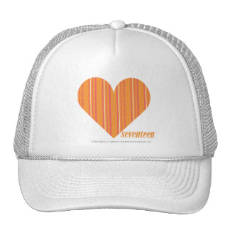 Thin Stripes Orange 3 Hats