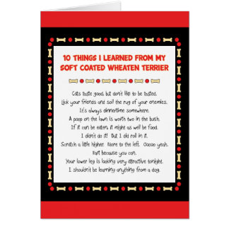 Things I Learned From Soft Coated Wheaten Terrier Card