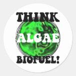 Think algae biofuel! round sticker