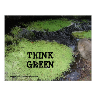 Think Green Pond Poster