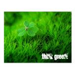 Think Green Tarjeta Postal