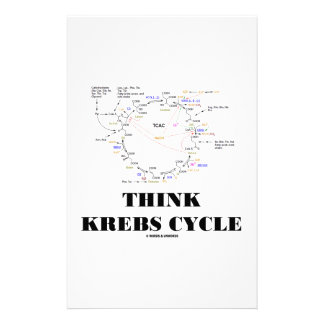 Think Krebs Cycle Citric Acid Cycle - TCAC Personalized Stationery