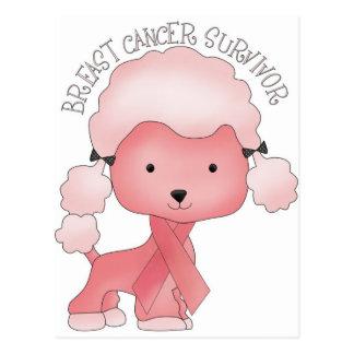 Think Pink Poodle Postcard