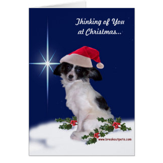 """Thinking of You at Christmas"" Papillon Card"