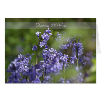 Thinking of you bluebells in the wood card