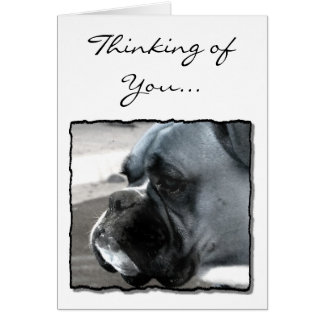 Thinking of You Boxer dog greeting card