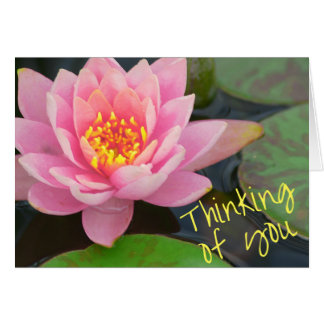Thinking of You Card - waterlily