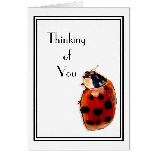 Thinking of You Cute And Classy Little Ladybug