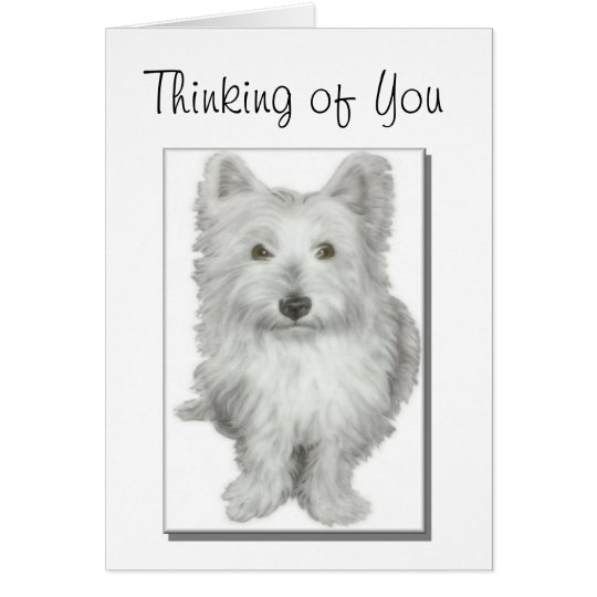 'thinking of you' cute westie dog card