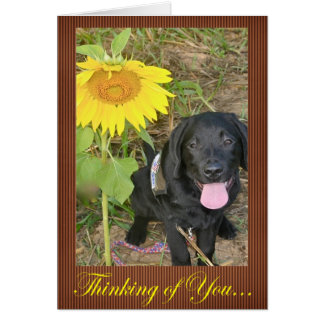 Thinking of You (Derek) Card