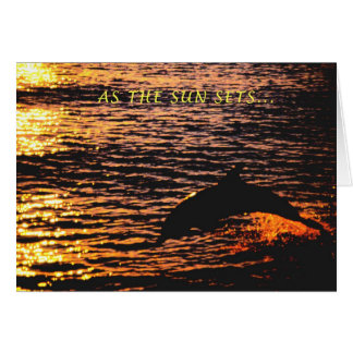 thinking of you ...dolphin sunset jump greeting card