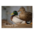 """Thinking of You"" Ducks Card"