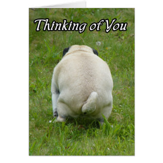 Thinking of You Funny Rude Pug Card