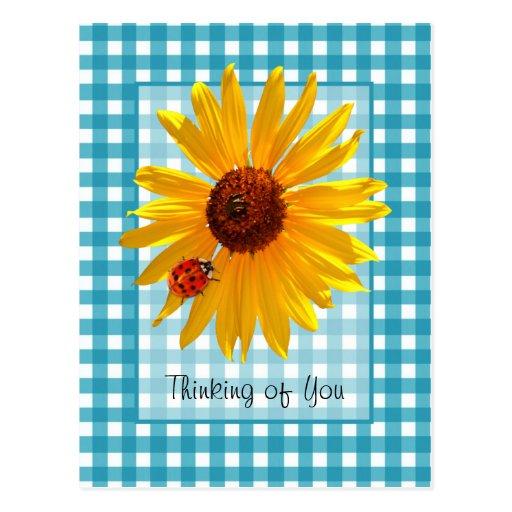 Thinking of You Ladybug On Sunflower Post Cards