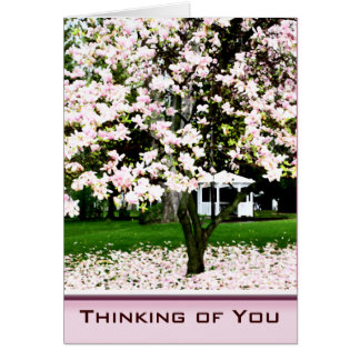Thinking of You Magnolia Tree Greeting Card
