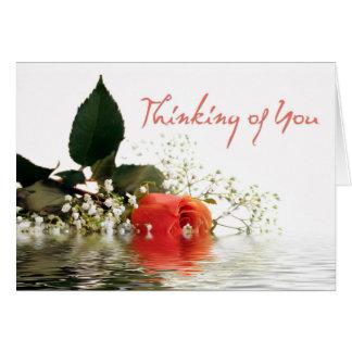 Thinking of You Orange Rose Greeting Card