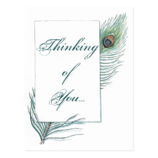 Thinking of You Peacock Feather Inspirational Postcard